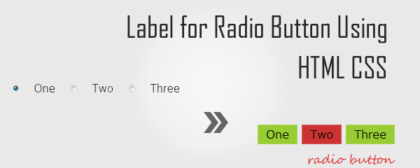 Label for Radio Button Using HTML CSS